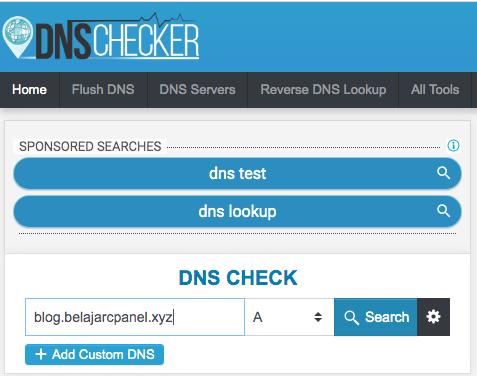 mengecek subdomain dengan DNS Checker